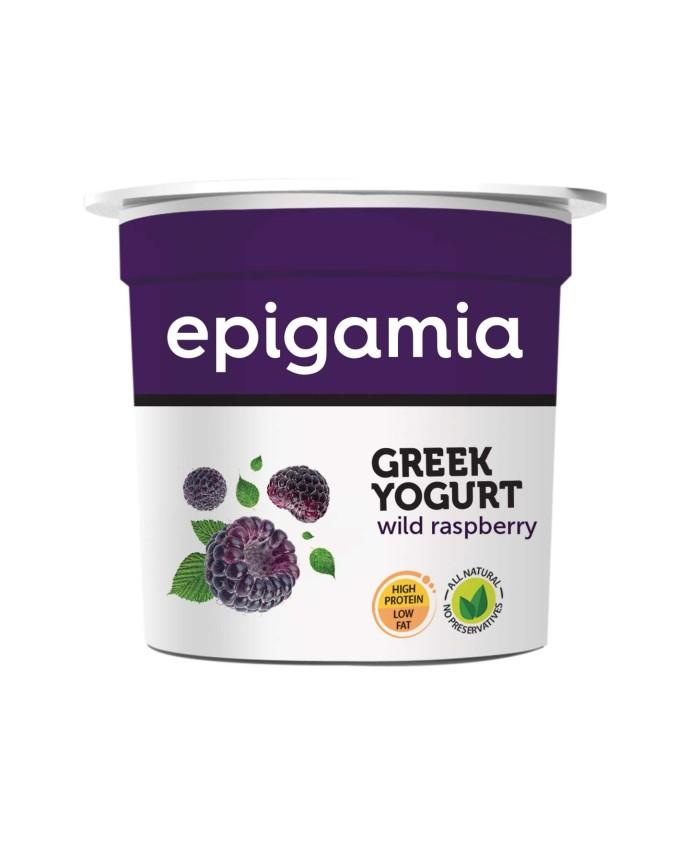 Epigamia Greek Yogurt Wild Raspberry -90 gm